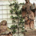 Spalieranbau mit Obstbäumen: Quitte