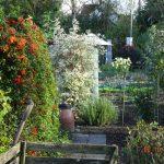 Garten als Lebensraum
